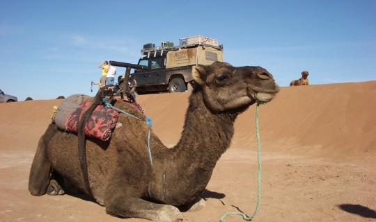 4x4 Marokko Erg Chegaga Expeditie